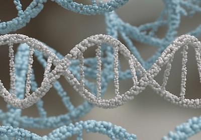 [경제강국, 기술독립이 만든다]<유전체 분석⑥>유전체 분석 시장 고성장…속도 내는 국내 기업들