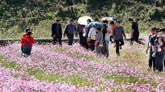 Khách du lịch đến Hàn Quốc tăng 14% so với năm ngoái. Số lượng khách Nhật Bản giảm nhẹ