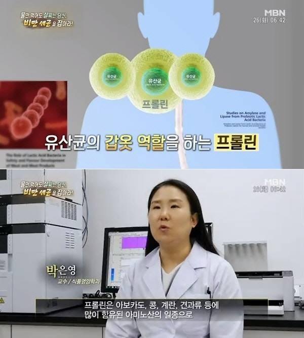 프롤린유산균 갑옷 입은 유산균이 살아서 장까지?