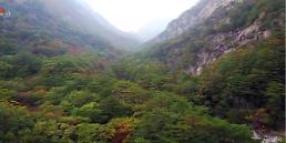 .韩统一部长:朝鲜首先发起拆除金刚山旅游设施提议.