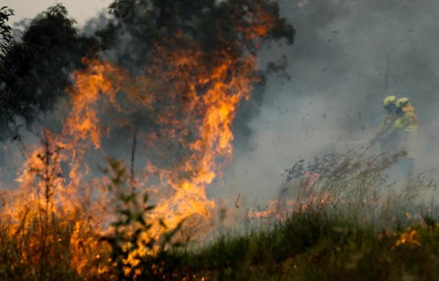 [포토] 호주 동부 최악 산불......비상사태 선포