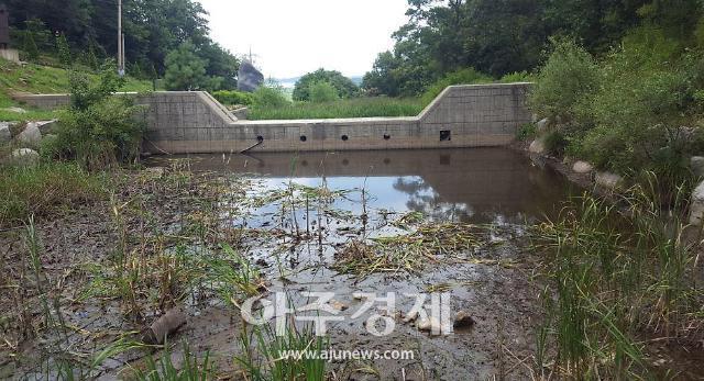 [학생마이크] 산사태와 폭우피해를 줄여주는 사방댐