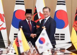 .文在寅会见文莱苏丹哈桑纳尔:加强两国能源及高端产业合作.
