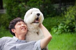 .韩国拟修订动物保护法:饲养烈性犬需义务投保.