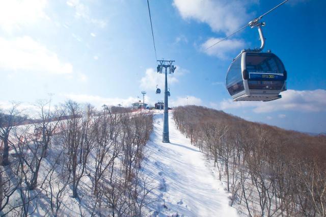 강추위와 함께 돌아온 스키 시즌…사고 대비한 보험 확인은 필수
