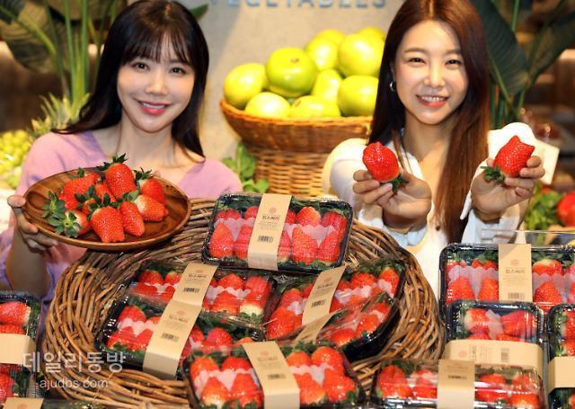 [조현미의 주말 장바구니] 올리브영 최대 60% 할인…위메프·G마켓 연말특가전 外
