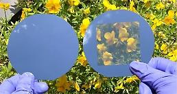 .Researchers develop transparent crystalline silicon solar cells with neutral color similar to glass.