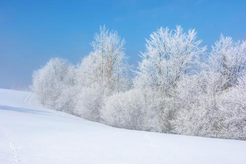 '눈꽃 풍경' 겨울 산행, 부상 없이 안전하게 즐기려면?
