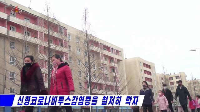 [신종코로나] 북한-러시아 하늘길도 막혔다…평양-블라디 항공편 잠정 중단