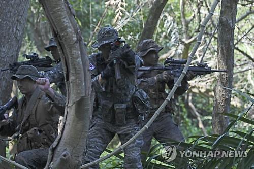 [신종 코로나] 해병대는 태국 코브라골드, 공군은 싱가포르 에어쇼 불참 검토