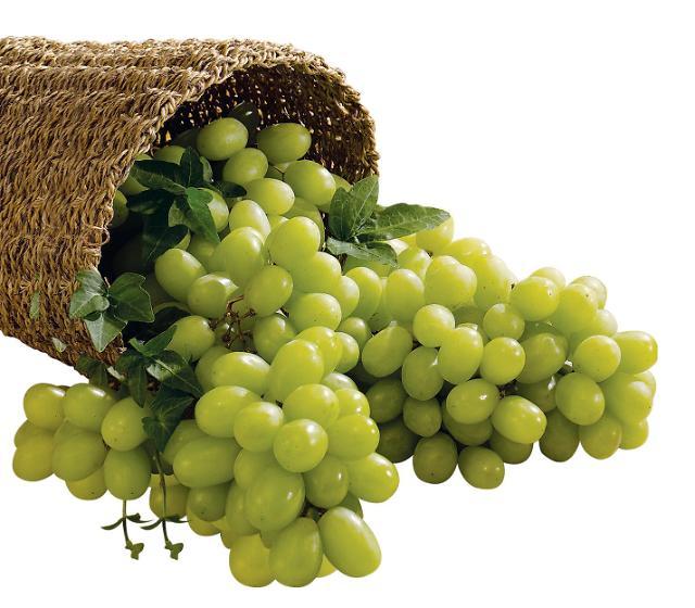 新南方政策渐显成效 韩国产水果东南亚地区大受欢迎