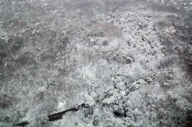 [포토] 눈 내린 남산순환로