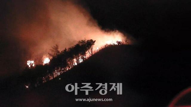 포항 해병대 1사단 사격장 인근 야산서 불…진화 중