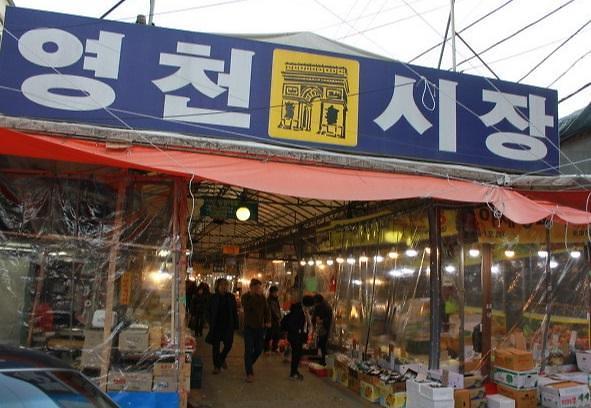 생방송 오늘저녁 영천시장 3대 맛집은?