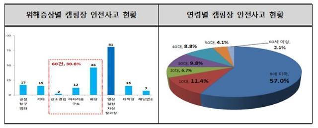 캠핑장 안전사고 31%, 화상‧중독사고