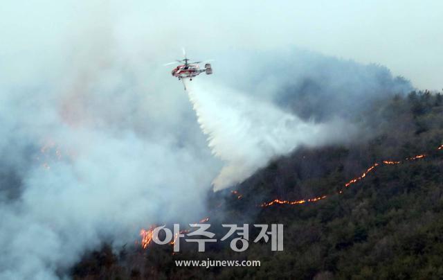 부산시, 봄철 대형산불 방지 민관 총체적 대응태세