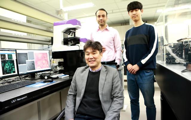 DGIST 연구팀, 3차원 이미지로 심장근육세포 분석 기법 개발