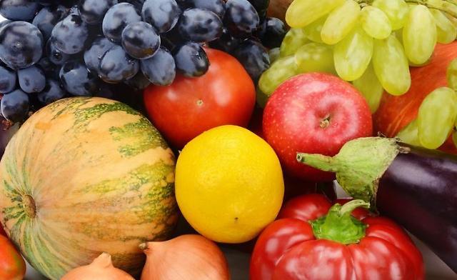 韩农产品出口因新冠疫情受阻 1月对华出口额减少逾两成