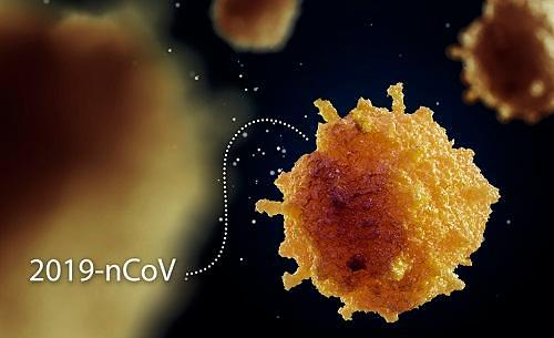 [코로나19]중국서 바이러스 감염 예방 경구백신 개발 성공