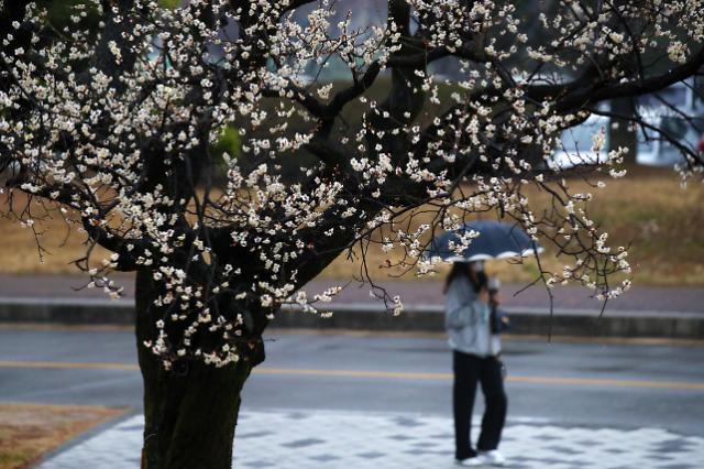 [Coronavirus] Health officials hope warm weather will slow virus spread
