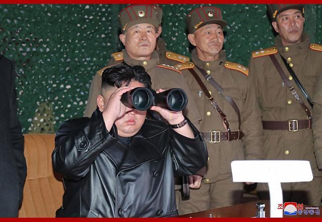 """韩朝美领导人展开""""书信外交""""共抗疫情 南北合作有望迎转机"""