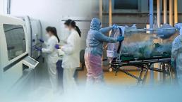 .POSCO意大利等地加工中心受疫情影响停运.