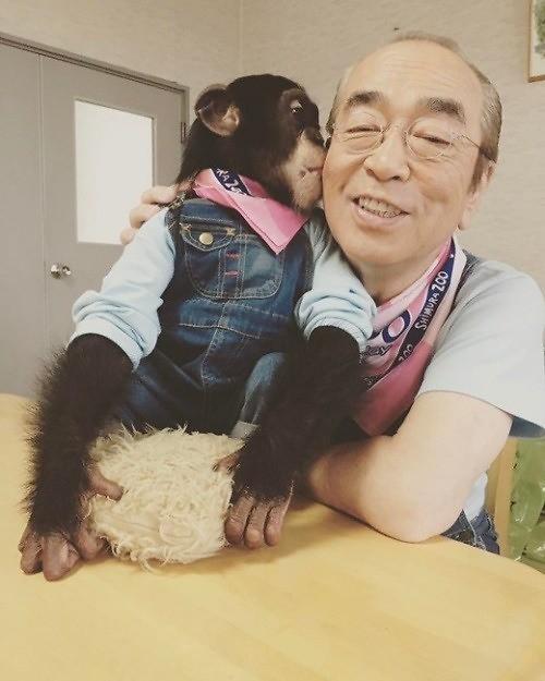 일본 개그맨 시무라 켄, 코로나19로 사망