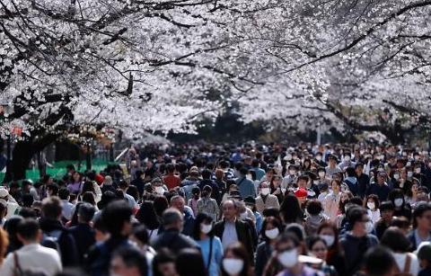 [광화문갤러리] 참 다른 한국과 일본