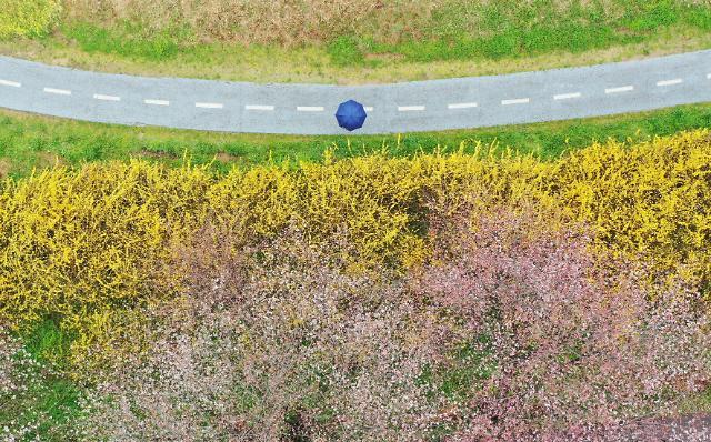 [광화문갤러리] 그래도, 봄은 온다
