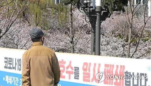 [코로나19] 서울현충원도 벚꽃기간 시민 입장 제한…코로나19 확산 방지