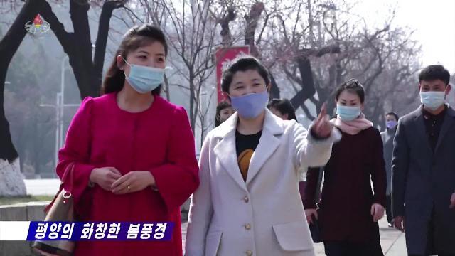 朝鲜居民戴口罩出行赏春