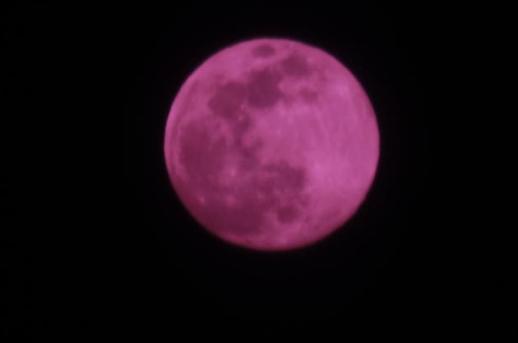 Ngắm trăng tròn tháng tư, Trăng hồng tại Seoul