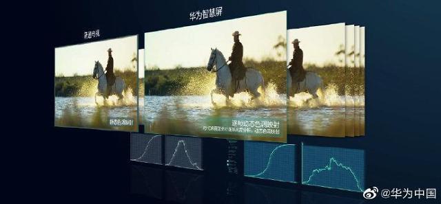 OLED电视市场大热 面板独家供应商LG Display业绩可期