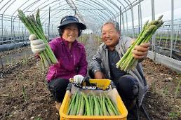 .Marketing promotion to stimulate asparagus consumption sparks online competition.