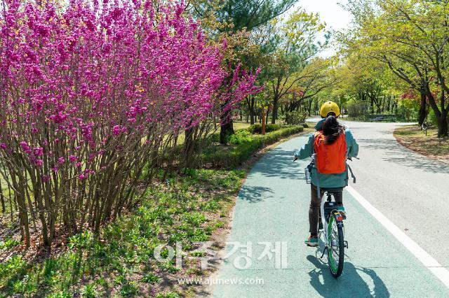 [기수정의 여행 in] 두 바퀴로 달리는 서울의 신록…코로나블루 안녕