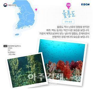 경북도, 수중레포츠 활성화 방안 모색 위한 간담회 개최