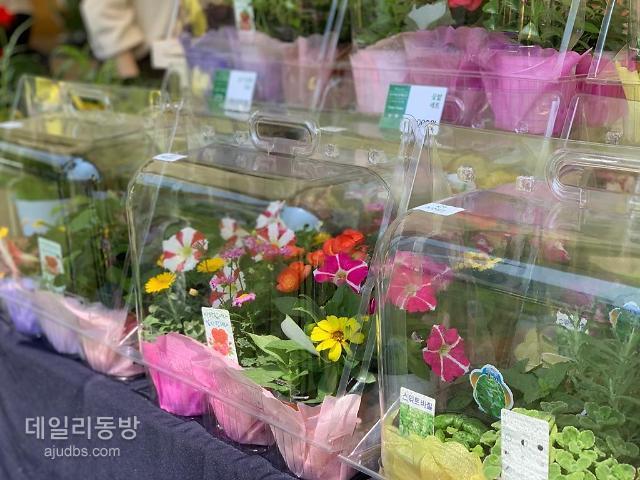 재난지원금으로 꽃 사세요 현대百 킨텍스, 고양시 꽃직판장 운영