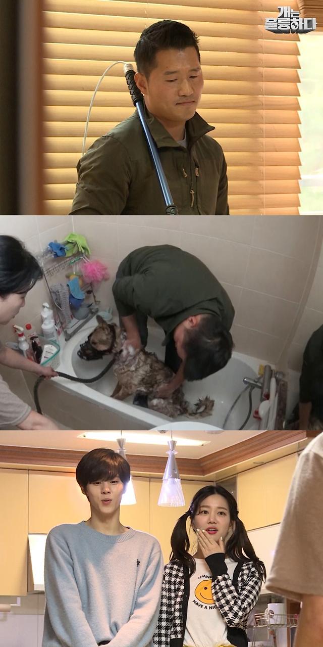 [오늘밤 채널고정] 개훌륭 역대급 난폭견 등장…강형욱 위기