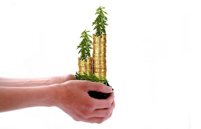 녹색채권 발행 1년새 3배 급증…국내 기준 마련 시급