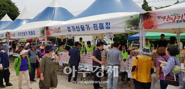 포항시, 제철 '장기산딸기' 드라이브 스루 판매...6월 6~7일까지
