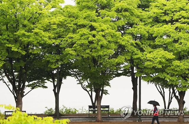 [날씨] 금요일 낮 최고 22∼35도…일부 지역 오전 미세먼지