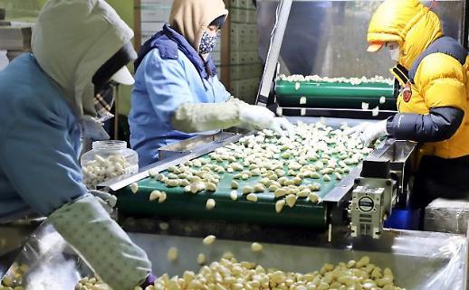 韩国大蒜前5个月对美出口同比暴增550倍