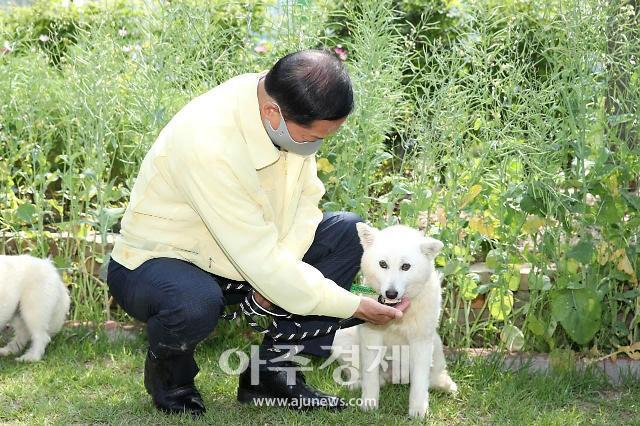 고양시, '민선7기 고양시 동물복지플랜 보고회' 개최 반려동물 천만시대 맞아 선진 동물복지체계 구축한다
