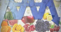 .统计:韩5月菜肉价格全面上涨 水果价格连续十个月下跌.