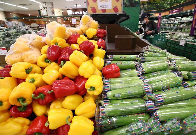 6月の消費者物価上昇率0%