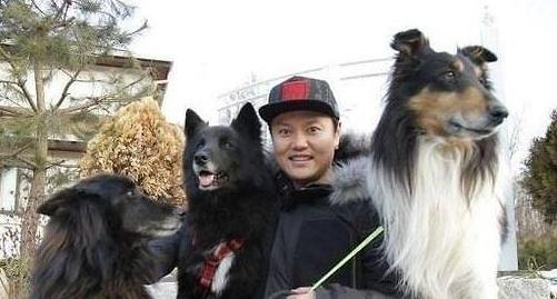 80대 여성 숨지게한 김민교 반려견 '양치기 개로 유명