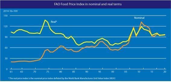 세계식량가격지수 올해 첫 반등…국제 수요 회복 영향