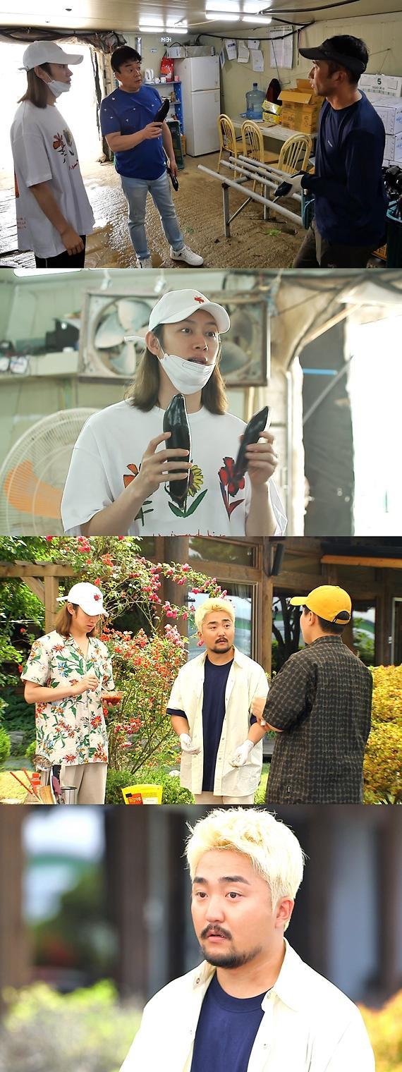 맛남의 광장, '호불호 甲' 못난이 가지, 믿고 먹는 백종원 레시피로 화려하게 변신