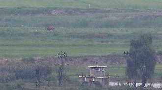 Con đường trở lại Triều Tiên của ca nghi mắc Covid-19 được cho là từ hòn đảo phía tây Gwanghwa