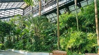 Seoul Grand Park mở cửa lại Vườn thực vật·Sở thú trong nhà bắt đầu từ tháng 8